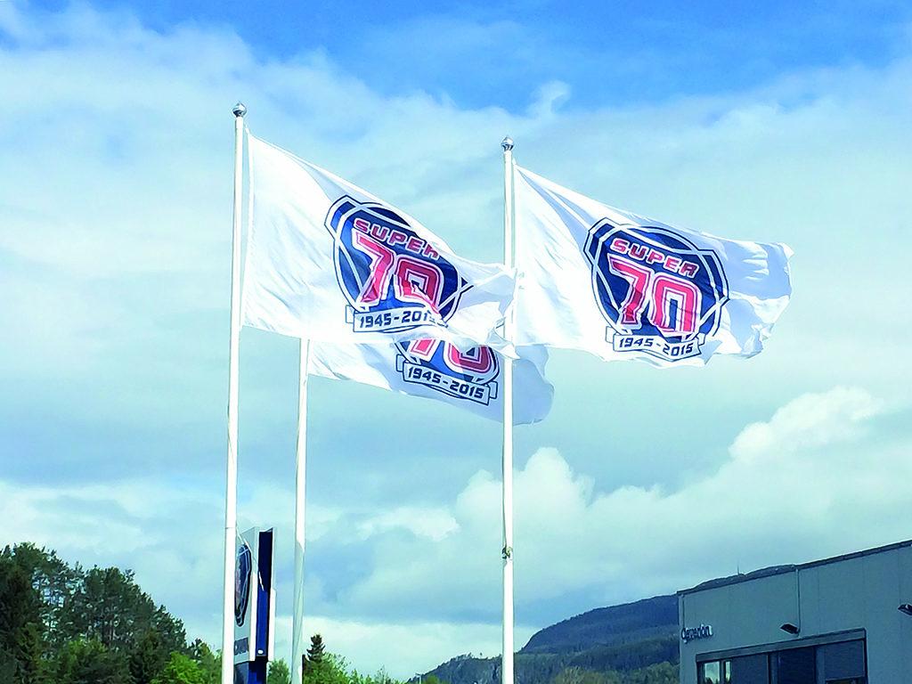 Flagg, kampanjeflagg, reklameflagg, flagg med logo