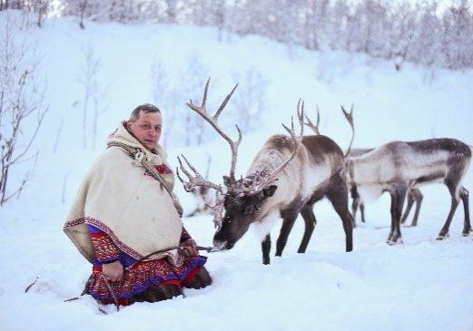 Firmatur, samisk, reinsdyr